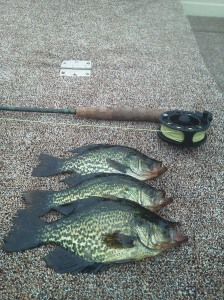 Crappie on the fly