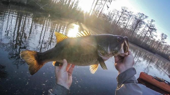 Little Changes = Big Results, Post Cold Front Bass Fishing